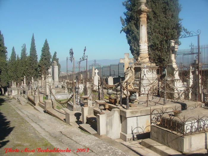 البوم صور لمدينة الجسور المعلقة الله يبارك عليها Dsc05218